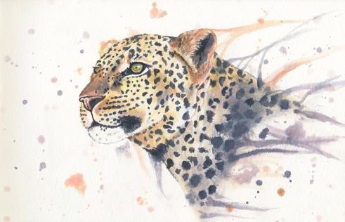 Leopard-Websize