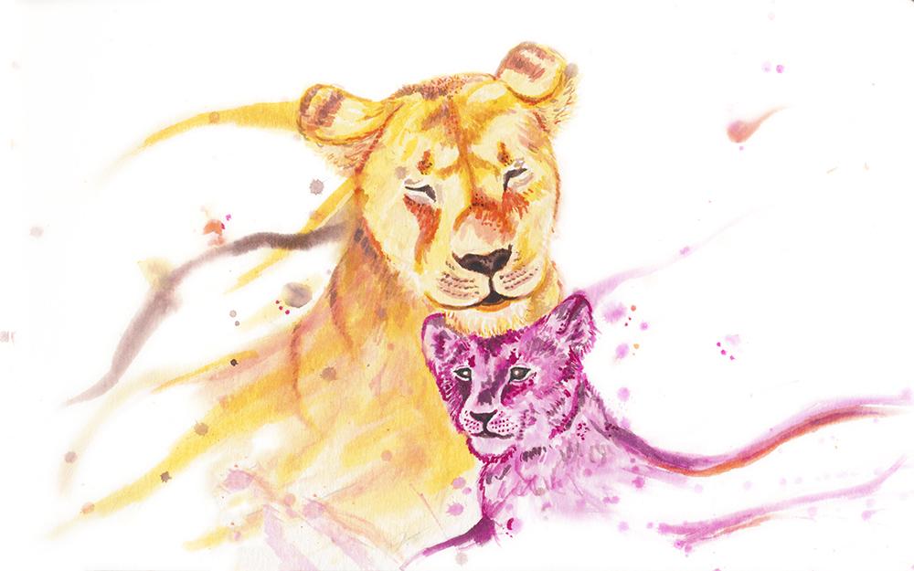 Lions-Websize