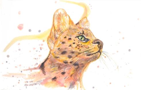 Serval-Websize